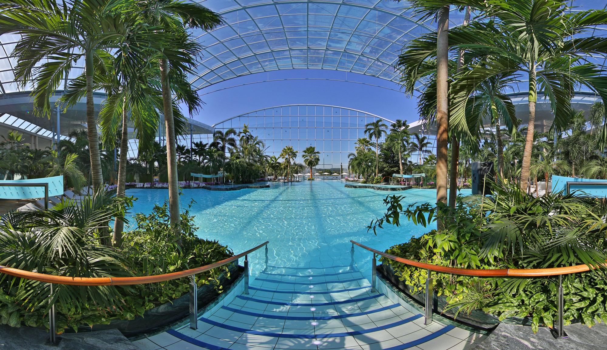 Palmenparadies_big